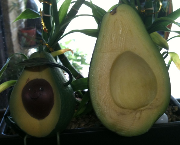 Beautiful yummy avos